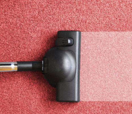 limpiar alfombras moquetas