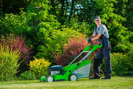 Resultado de imagen para jardineros